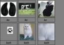 Bondgårddjurens spår och skinn -beställning
