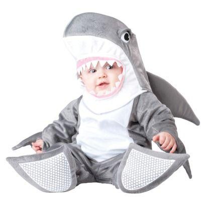 A friendly little shark