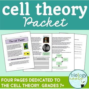Cell Theory Packet is 4 pages dedicated to the cell theory. Students learn about Hooke, Schwann, Schleiden and Virchow and how their scientific discoveries lead to the cell theory.