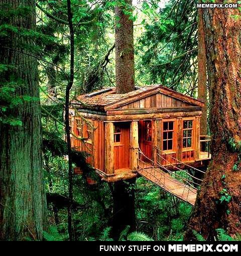 Best Treehouse Masters Pete Nelson Images On Pinterest