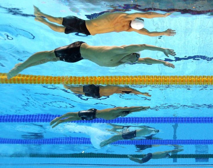 underwater olympic pool - Google Search