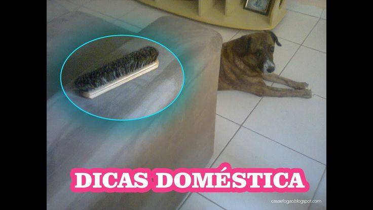 Como remover os pelos de cachorro do sofá