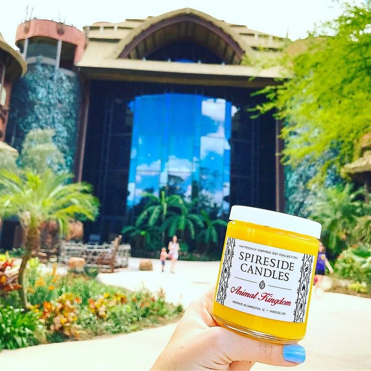 What's your fave part of the Animal Kingdom park? (Although our Animal Kingdom smells like the resort and not the animals!)  Fortunately you don't have to be at the Animal Kingdom Lodge to experience the warm vanilla and earthy sandalwood scent...we've bottled it up for you to enjoy at home!    #spireside #spiresidecandles #animalkingdom #animalkingdomlodge #disneyresort #disneyresorts #disney #disnerd #disneypic #disneyland #disneyworld #wdwbde #wdw #disneyphoto #disneyphotography…