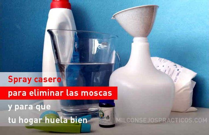 Spray casero para eliminar las moscas y para que tu hogar huela bien
