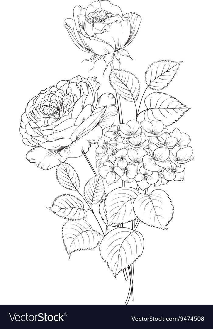 Floral Garland Of Roses Vector Image On Floral Drawing Flower
