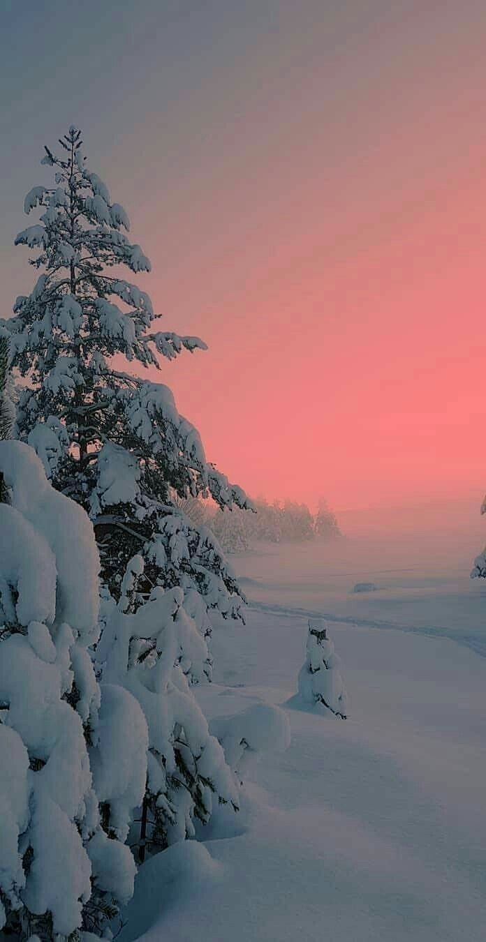 Location And Photographer Unknown Winter Landscape Winter Scenery Winter Pictures