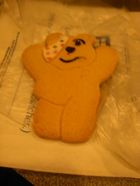 Pudsey ' Children In Need ' Biscuit 2015