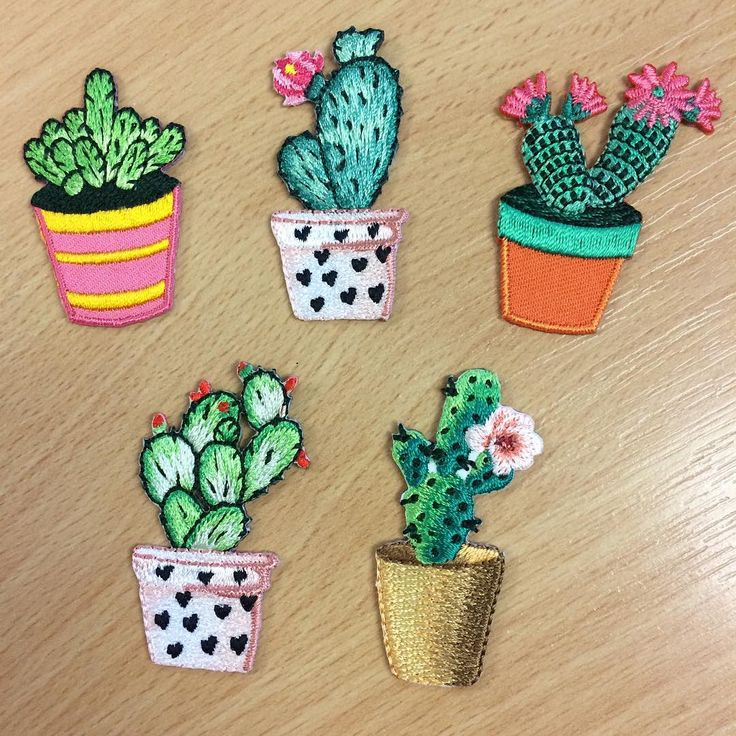 Best images about cacti on pinterest cactus print
