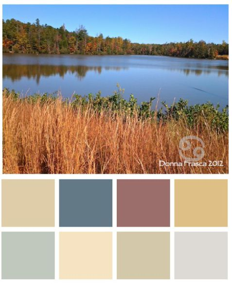 Fall Color Palettes | Decorating by Donna • Charlotte's Color ...