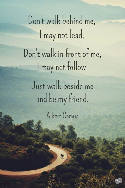 The 200 Most Beautiful Friendship Quotes Thoughts Friendship