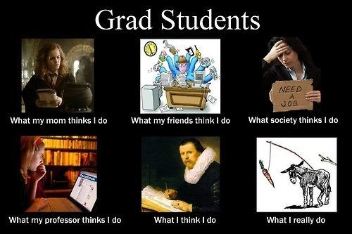 The Bitter Reality of Grad School