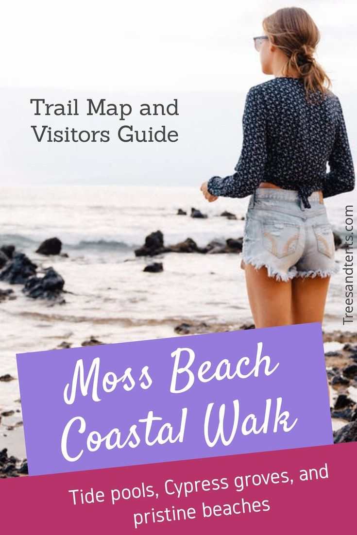 Fitzgerald Marine Reserve Hike Moss Beach Marine Reserves How To Fly Cheap