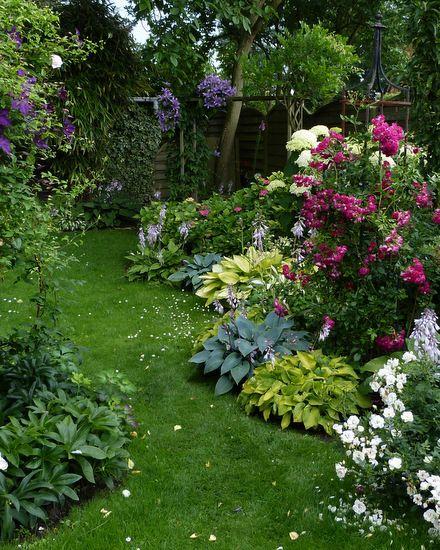 Rosen und Clematis – Clerotiker 2014 – Seite 23 – Rund um die Rose – Mein schöner Garten online Mehr