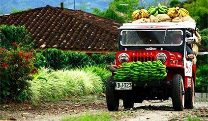 Zona Cafetera – Viaja por Colombia
