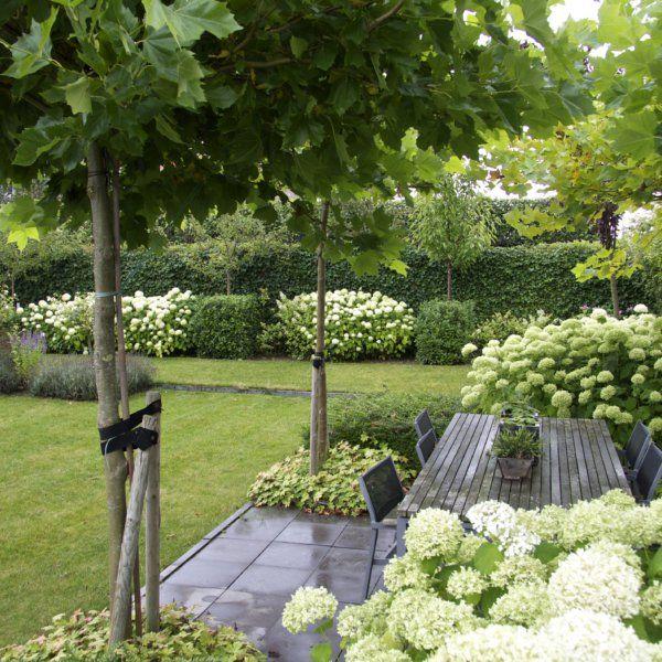 moderne witte tuin