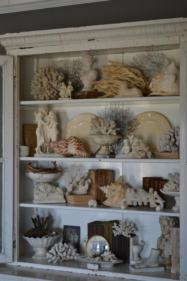 17 best ideas about shell display on pinterest display for Ideas for displaying seashells