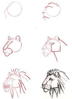 #León #Dibujos #Dibujo #Afiches #Ilustraciones #Art #Diseno #Diseño #Leon