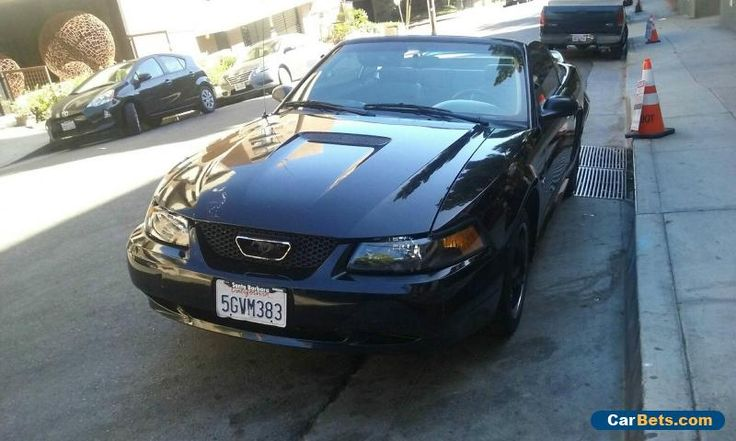 1000 Ideas About 2000 Ford Mustang On Pinterest Ford