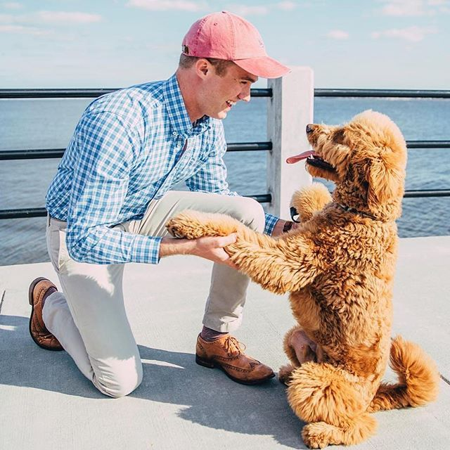 The time has come. The wait is over. #SouthernShirt's button downs are the button downs you'll tell your grandchildren about. Your dog will be pretty pumped about it too. #SouthernShirt #PreppyStyle #Prep