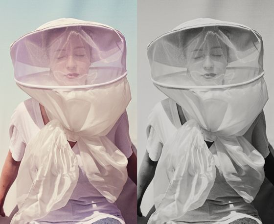 """...the kind of beauty that requires a beekeeper's hat."" - Woody Allen to Diane Keaton"