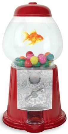 17 best images about aquariums fish bowls and fish tanks for Gumball machine fish tank
