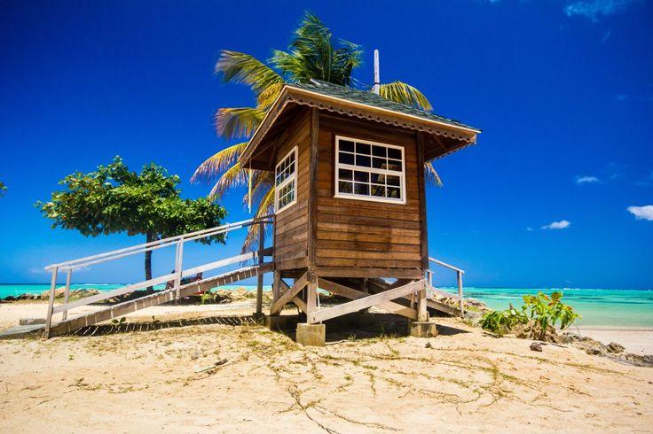 Reis til eksotiske Tobago i vinter