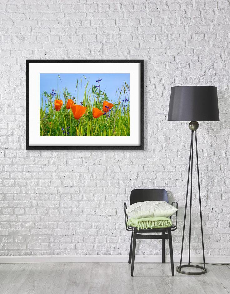 Framed Poppy Wall Art, California Wildflower Decor, Wooden Frame, Framed Art,  Flower