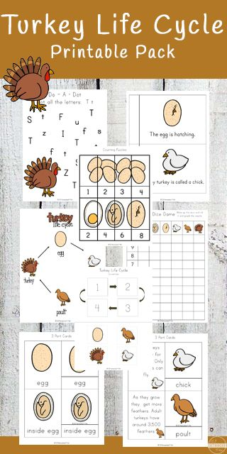 Beatrix Potter and Alliteration Worksheet   Lesson Planet    Teacher WorksheetsCreative  Writing     Pinterest