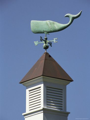 Whale weathervane....my new thing now is whales :)