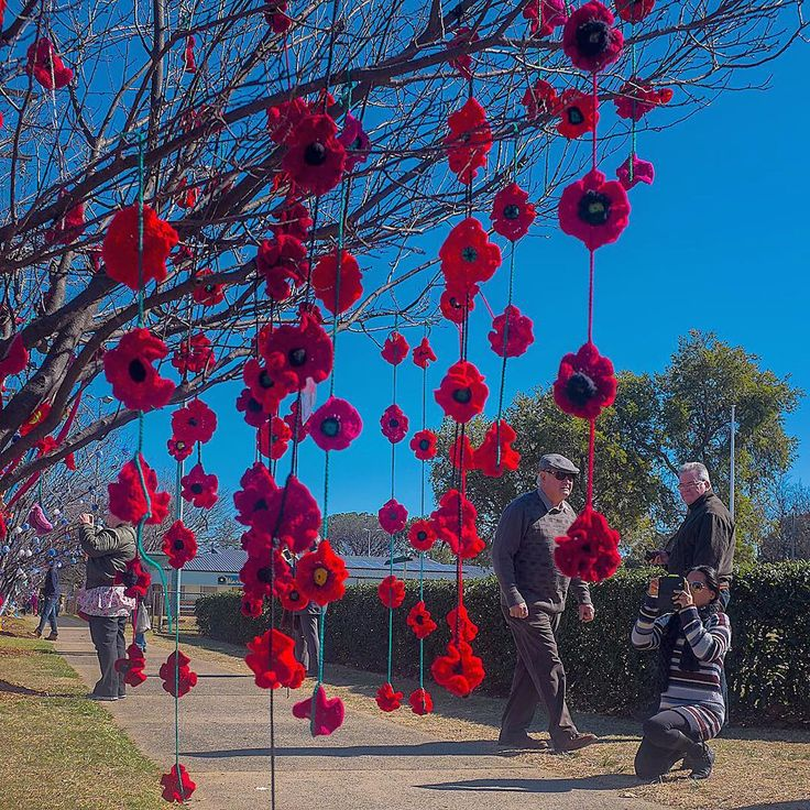 Another delightful example of #yarnbombing at Warwick's Jumpers and Jazz in July Festival. This tree focused upon commemorating the 100th anniversary of our #Anzac servicemen and women. #exploreaustralia #streetart #yarnbomb #crochet #knitting #urbanknitting