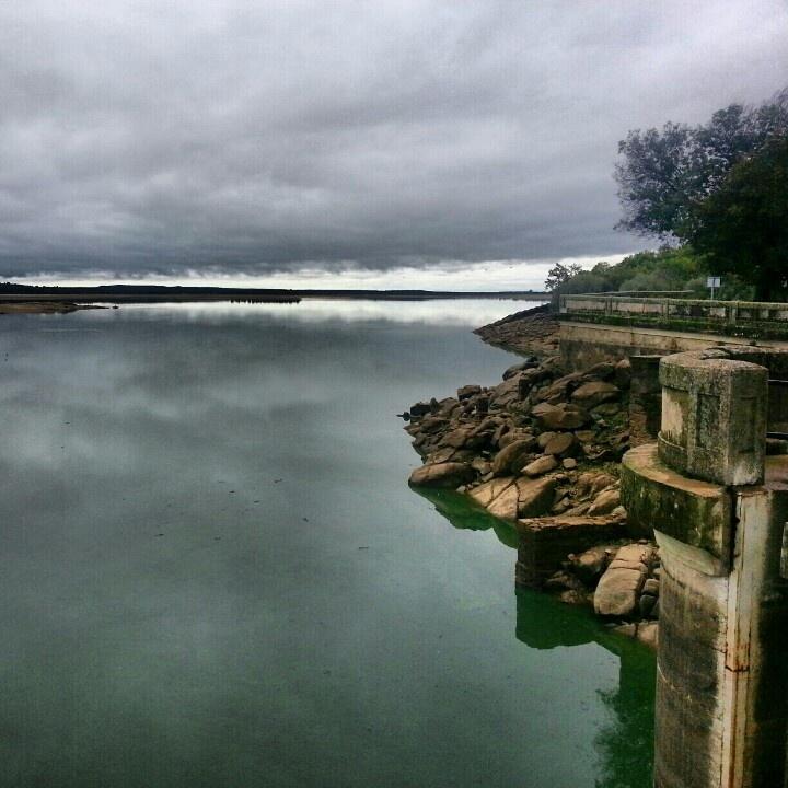 En la presa del Rosarito