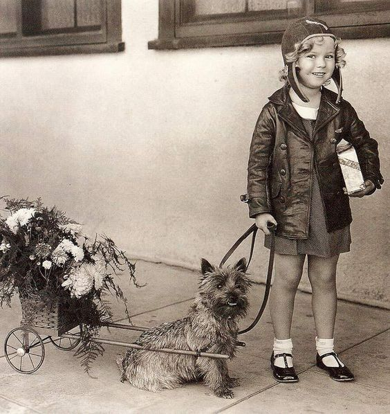 0 Shirley Temple and Cairn Terrier