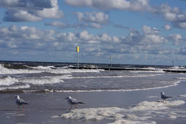 polskie morze jesienią