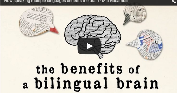 A Wonderful TED Ed Video on The Cognitive Advantages of Bilingualism ~ Educational Technology and Mobile Learning