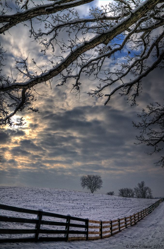 """""""The Quiet of Morning Snow"""" Taylorstown, Virginia, US; by Tom Lussier"""