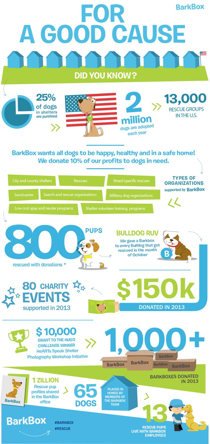 For a Good Cause - from Barkbox.com / each monthly gift to your dog from Barkbox.com helps to support dogs less fortunate