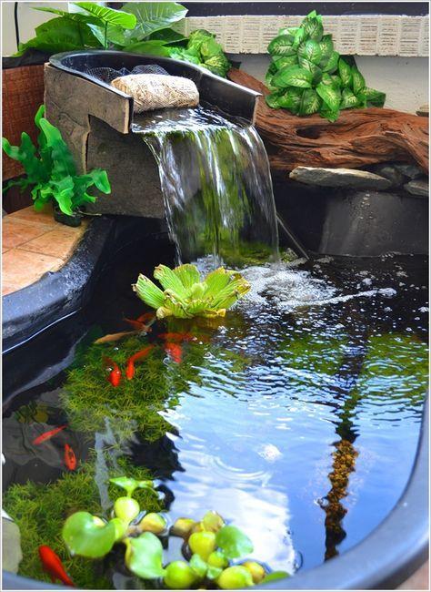Best 20 indoor pond ideas on pinterest outdoor fish for Indoor koi aquarium