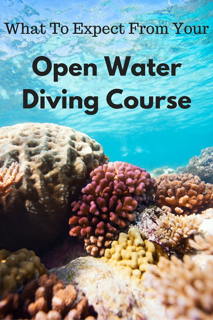 Have you ever thought about learning to scuba dive but not sure what to expect from the open water course? This guide will give you a bit more information!