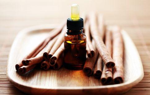 O óleo de canela é muito apreciado não só na aromaterapia como também conta com muitos benefícios para a saúde! #canela #óleoessencial #cinamon