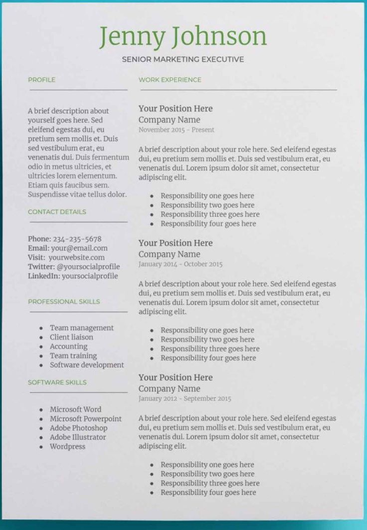 Professional Downloadable Word Document Resume Templates
