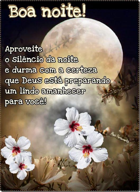 ✿⊱❥ Boa Noite! ❥❥❥