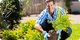 #Tree #Surgeons #Ascot - Braywood Tree Surgery are tree surgeons in Ascot, providing tree surgery in Ascot, Windsor, Maidenhead, Bracknell, Egham, Staines and throughout Berkshire.