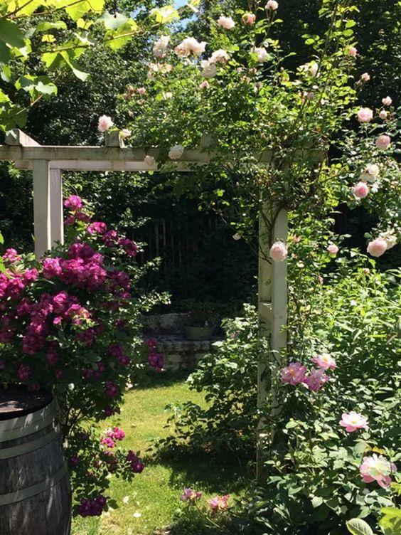 10 Ideen für deinen eigenen Cottage Garten!