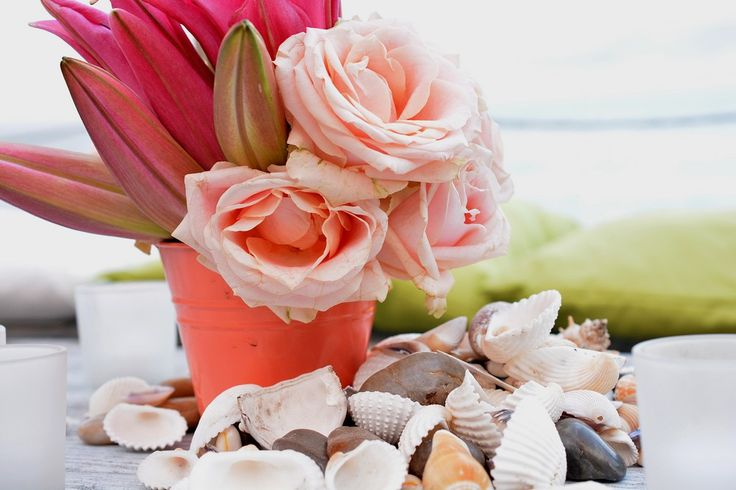 Cocktail table decoration with shells