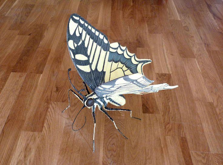 "Farfalla – ""Papilio machaon""."