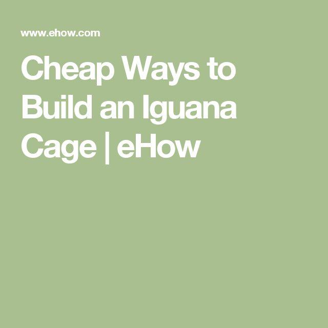 Cheap Ways to Build an Iguana Cage   eHow