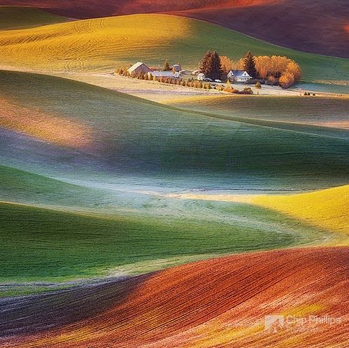Frosty Morning Palouse, Chip Phillips, Palouse Hills, Washington  http://www.chipphillipsphotography.com/