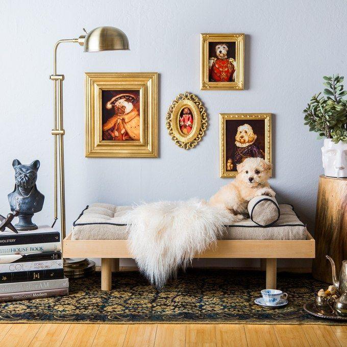 Mejores 11 imágenes de My Style en Pinterest | Llevamos, Perritos y ...