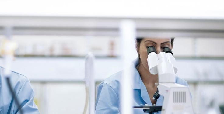 HAYS, ofertas de trabajo y empleo en Pharma, Sanidad, salud, laboratorios, healthcare, medical en Madrid, Cataluña, Valencia, Andalucía, País Vasco, Bilbao, Barcelona, Madrid, Sevilla, Valencia y Madrid