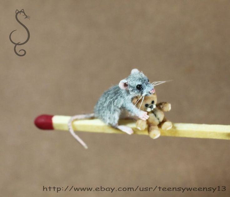 OOAK Dollhouse Miniature Pet Rat with Teddy Flocked Handmade Animals 1 12 scale  Handmade